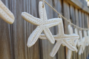 starfish made from salt dough